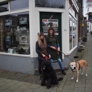 dogxperience Arnhem dicky en Erny