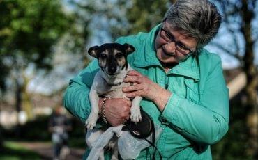 honden en baasjes evie boef