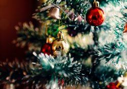 leukste kerstbomen