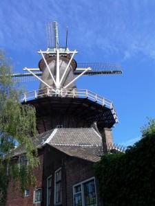 Windmolen De Roos Pinksteren Delft