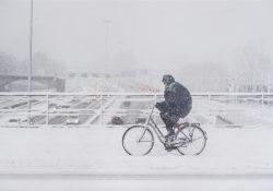 Sneeuw Den Bosch