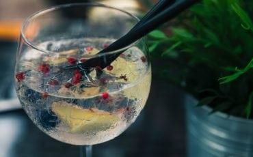 gin tonic banier