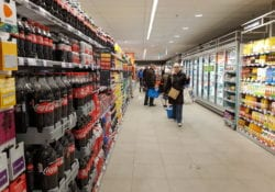 supermarkten kerst den bosch
