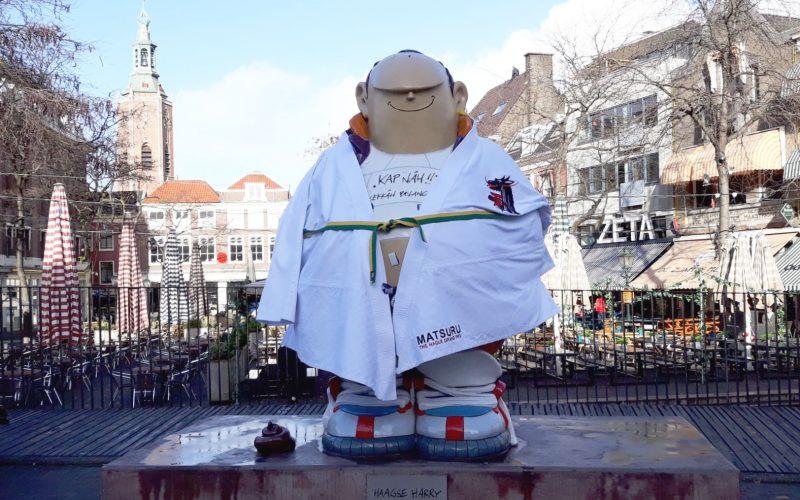 Haagse Harry met judopak