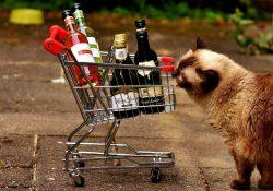 High Wine Ditjes en Katjes
