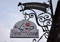Tea-Rose
