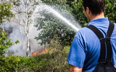 natuurbrand anp