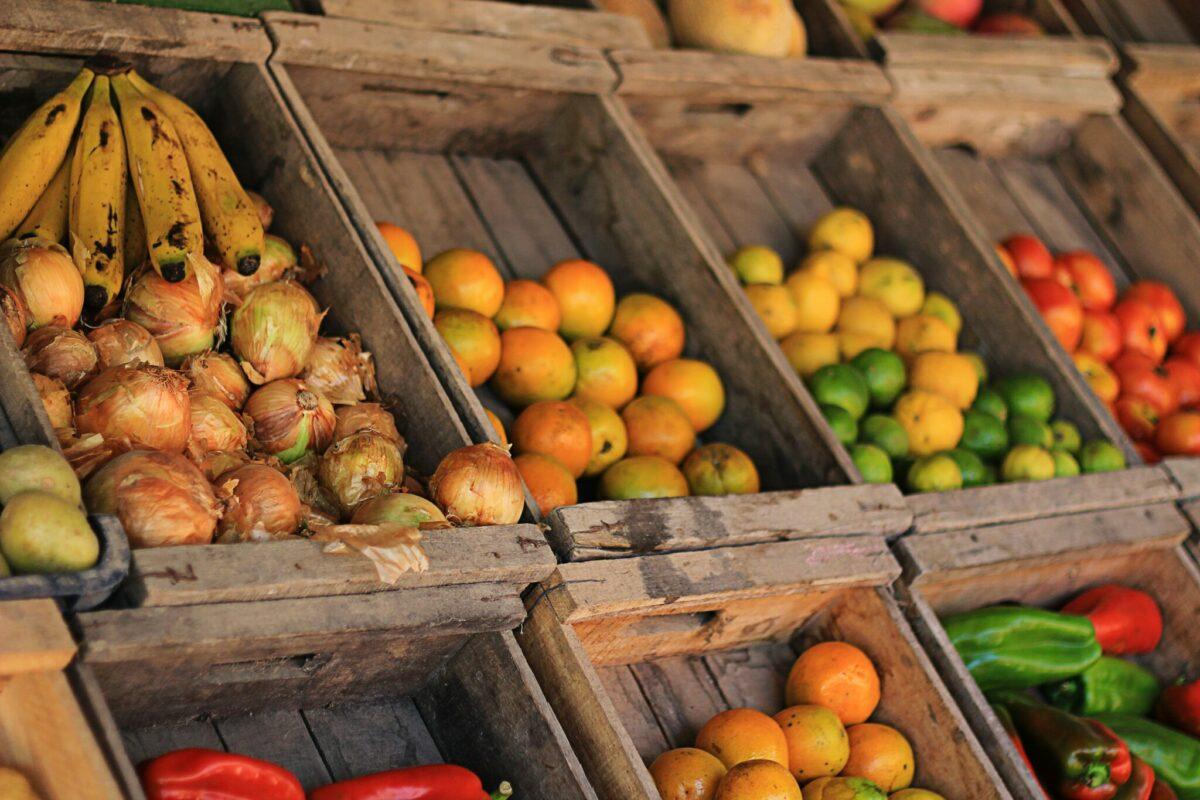 europese verkiezingen groente fruit handel