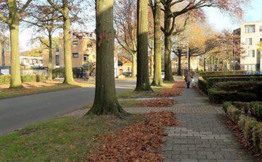 herfstbladeren opruimen gemeente enschede