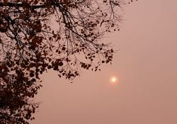 Rode zon oranje lucht Gouda