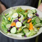 vegetarisch eten in gouda