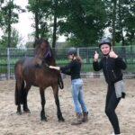 paardenkompas gouda