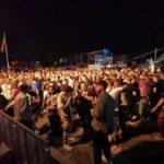 festival gouda