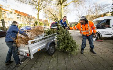 kerstboom inleveren Gouda