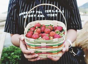 Aardbeien markt
