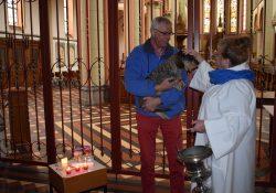Dierendag zegening Bonaventurakerk Woerden