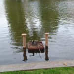 Meerkoet waterkip broedplek Singel Woerden