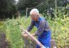 Landgoed Bredius Moestuin pluktuin vrijwilliger