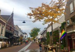Regenboogfeestjes regenboogvlag binnenstad Woerden